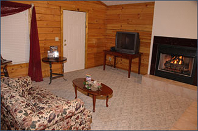 living area with gas fireplace in cabin near Pigeon Forge TN