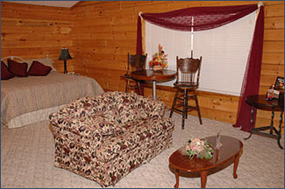 Living area and king bed in studio Pigeon Forge cabin